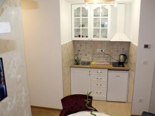 moderna kuhinja, kompletno opremljena kuhinjskim priborom